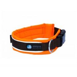Steckhalsband Protect